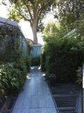 jardin-5344