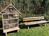 jardin-arboriculture-fruitiere-benedicte-douchet-5-9634