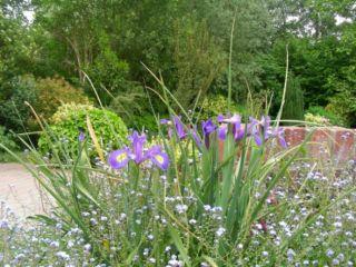 a-la-maison-du-heron-bb-garden-spring-3550