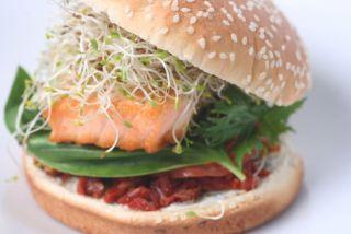 burger-diet-2-3571