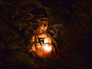 budha-night-4349