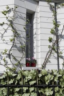 ext-jour-facade-modif-9031