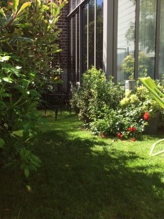 jardin-9060
