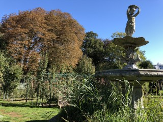 lille, jardin lille, jardins lille, jardin d'arboriculture fruitiere lille