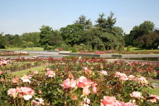 Jardin des Plantes Lille