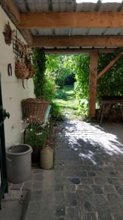 jardin2-modif-6443