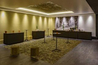 mercurelillemarcenbaruel-jeux-lobby-reception011-10392