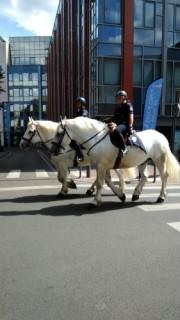 police-a-cheval-2-8145