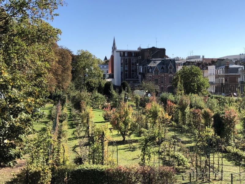 jardin-arboriculture-fruitiere-benedicte-douchet-11-9633