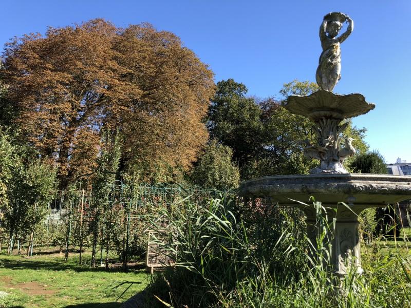 jardin-arboriculture-fruitiere-benedicte-douchet-2-9635