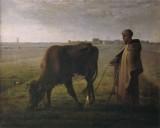 Femme faisant paître sa vache