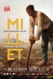 millet-40x60-hd-003-31905
