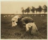 Tenjeta Calone, Philadelphie, 10 ans. Récolte de la canneberge, 4 ans. Champ des White, Browns Mills, N.J.