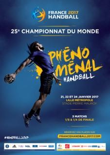 lille, stade pierre mauroy, stade lille, stade villeneuve d'ascq, france handball, championnats du monde de handball